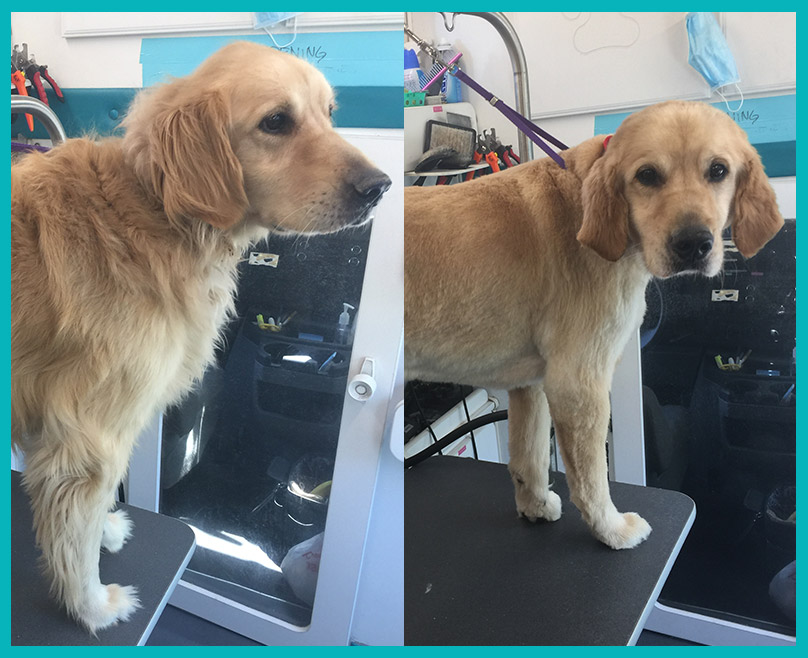 Client Stories: Baxter